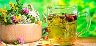 травенной чай
