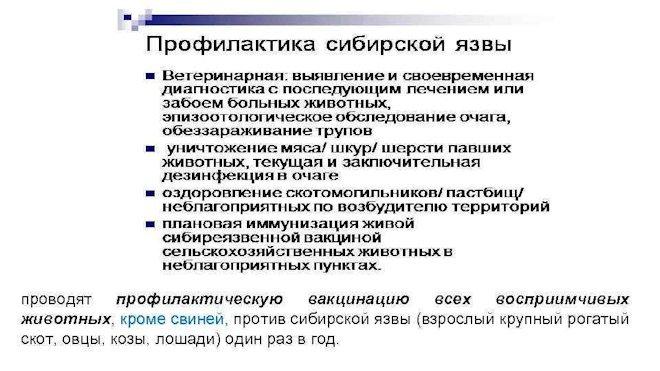 профилактика сибирской язвы