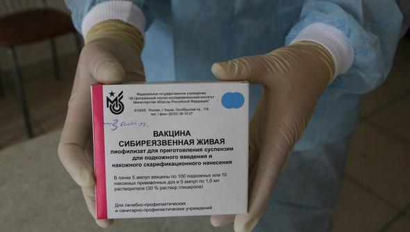 вакцина сибиреязвенная живая