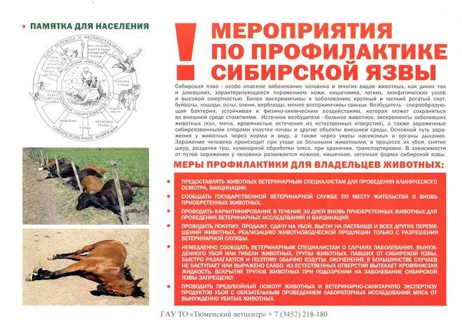 мероприятия по профилактике сибирской язвы